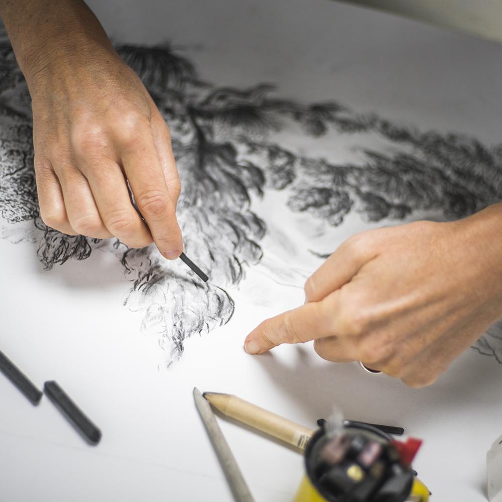 Gros plan sur les mains de Céline Dominiak en train de dessiner au fusain