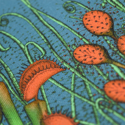 Détail d'une pochette taille L de la collection Carnivore de Céline Dominiak, avec des insectes et des plantes carnivores sur fond bleu, recto