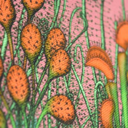 Détail d'une pochette taille L de la collection Carnivore de Céline Dominiak, avec des insectes et des plantes carnivores sur fond rose, recto