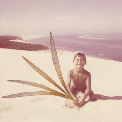 Collage de Céline Dominiak sur photographie argentique couleur, pétales