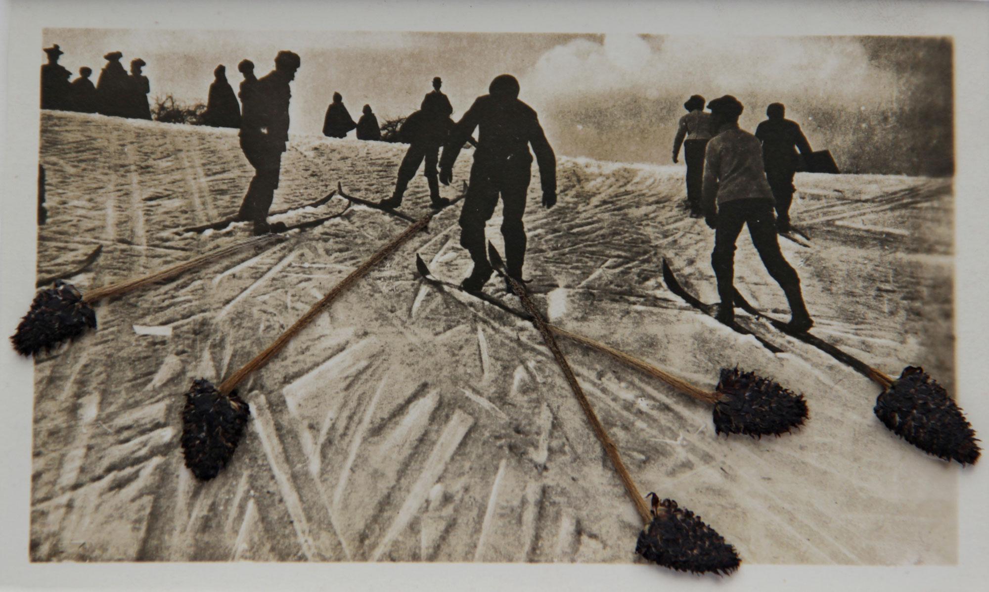 Collage #43 de Céline Dominiak sur photographie anonyme. groupe de skieurs en contrejour dont les traces se prolongent avec des tiges de fleurs séchées.