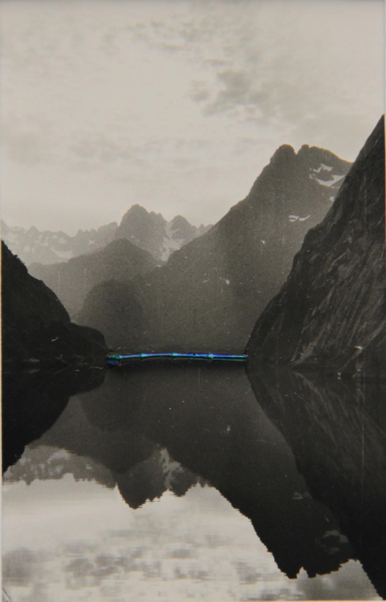 Collage #43 de Céline Dominiak sur photographie anonyme, paysage et corps de libellule